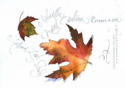 Autumn Leaves in NC | Sketchbook